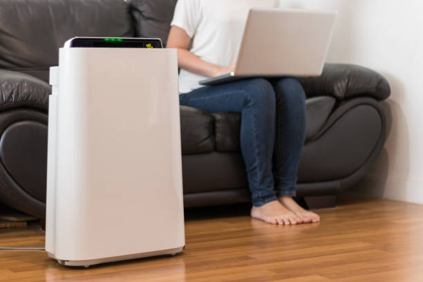 Air purifier Air purifier in a living room, woman working with laptop with filter for clean room air filter stock pictures, royalty-free photos & images
