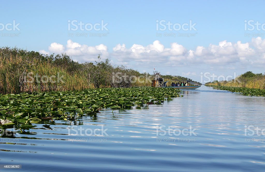 Airboat in Everglades stock photo