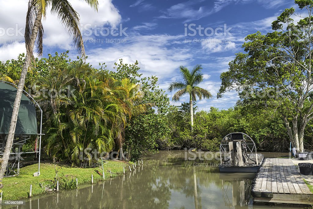Airboats in the Everglades National Park stock photo