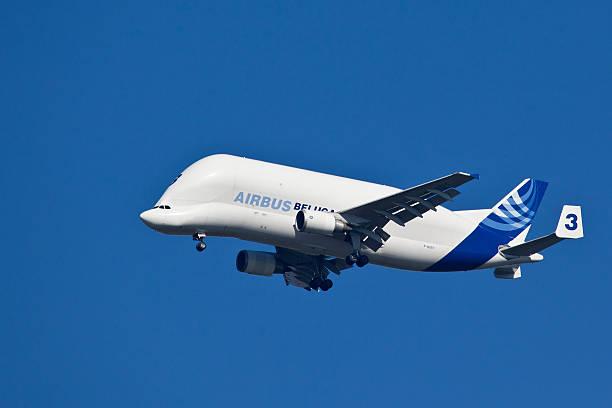 airbus a 300-600t beluga-air transport - aufgemotzte trucks stock-fotos und bilder