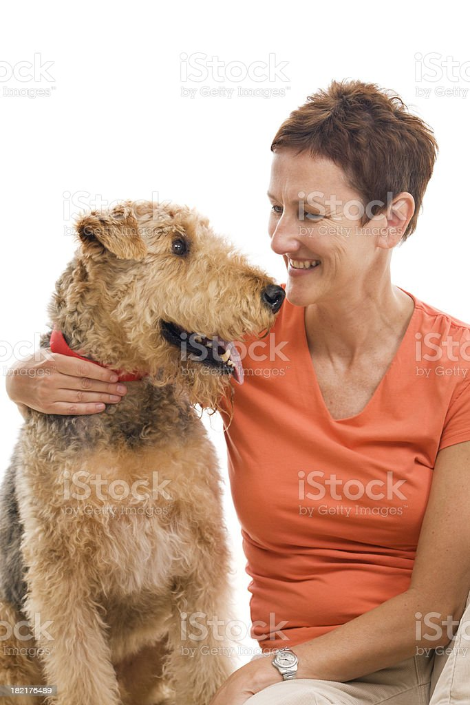 Airedale And Dog Owner Vt stock photo