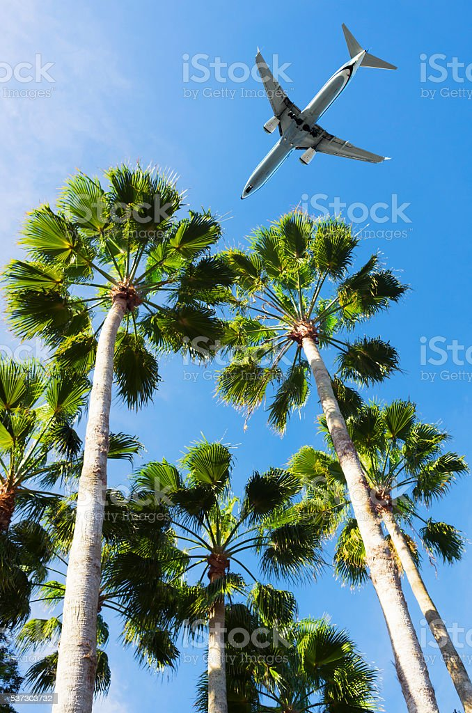 Airliner Landing in Tropical airport stock photo