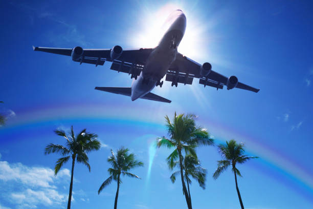 Airliners and palm trees stock photo