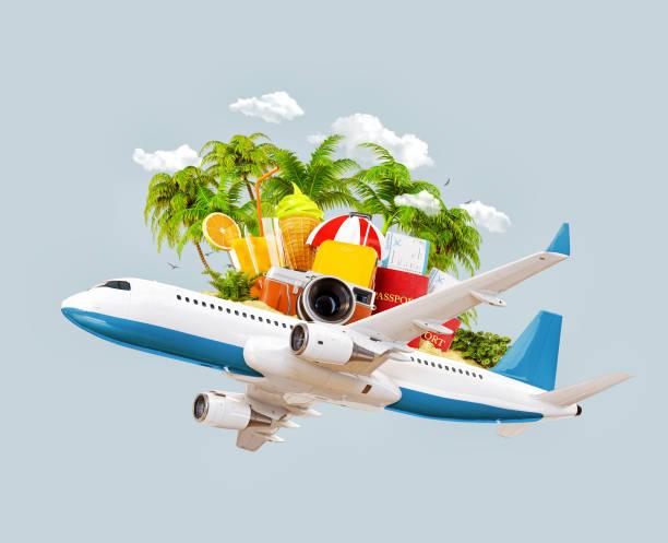 Flugzeug und tropischen Palmen auf einer paradiesischen Insel – Foto