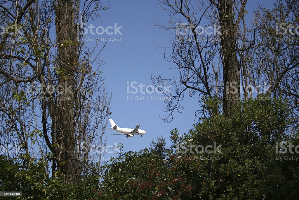 airplane between trees royalty-free stock photo
