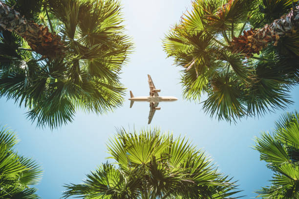 airplane flight. tropical vacations. - travel imagens e fotografias de stock