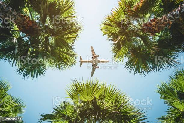 Photo of airplane flight. tropical vacations.