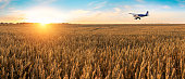 istock Airplane flying above the golden wheat field and blue sky with picturesque clouds. Beautiful summer landscape. Treatment, watering and spraying of fields with pesticides. Crop protection from pests. Time of harvest. 806907396