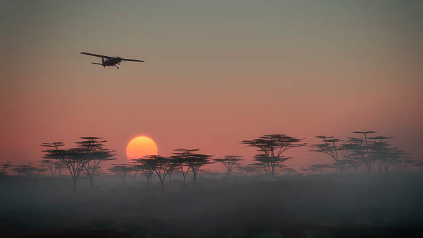 Airplane flying over misty savannah landscape at dawn. stock photo