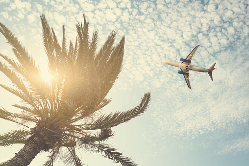 istock Airplane flying over tropical palm tree on cloudy sunset sky background. Summer and travel concept 1088657688