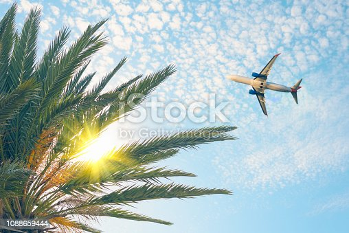 Airplane flying over tropical palm tree on cloudy sunset sky background. Summer and travel concept