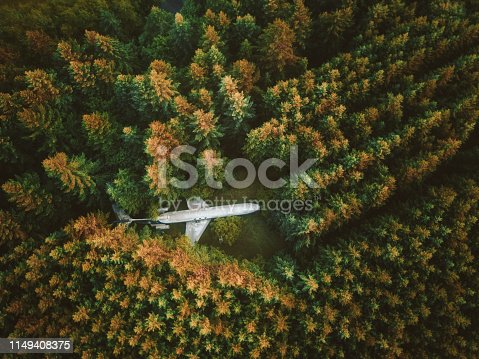 airplane lost in the forest