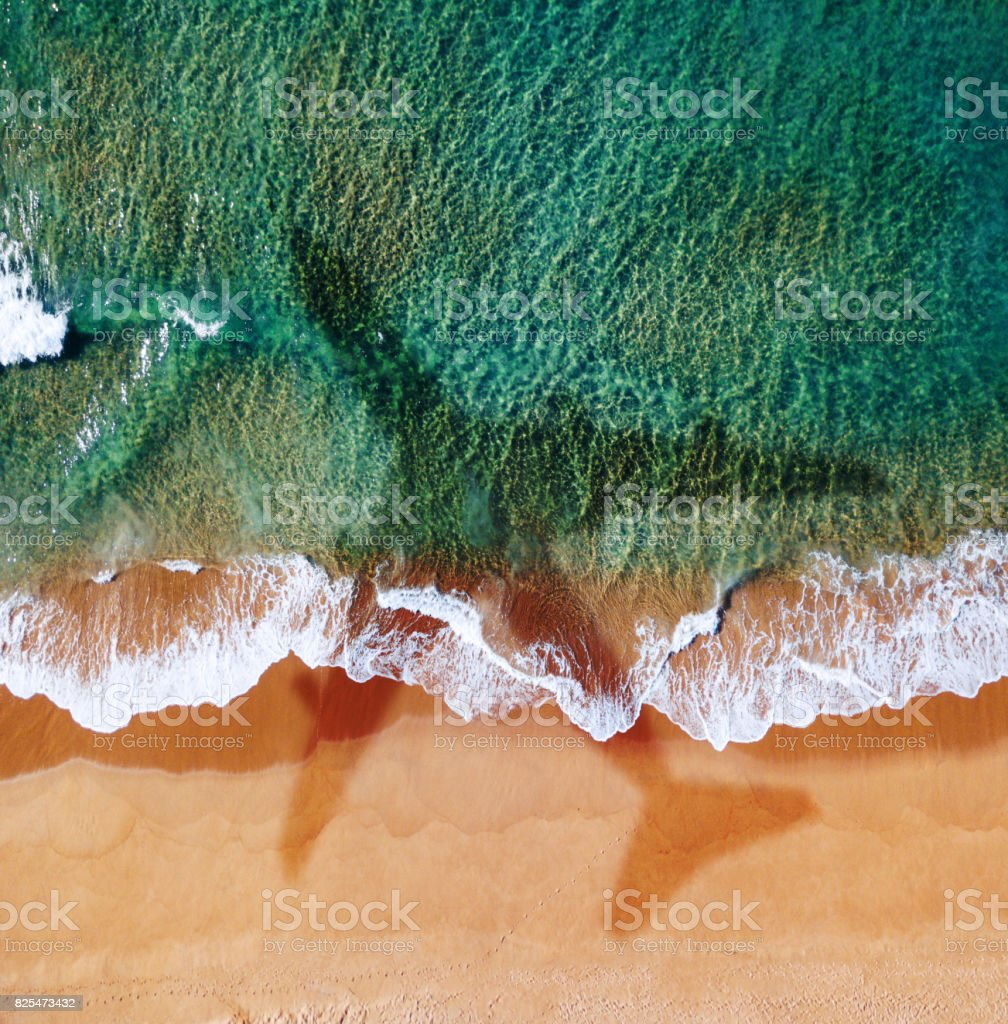 airplane over the beach in australia stock photo