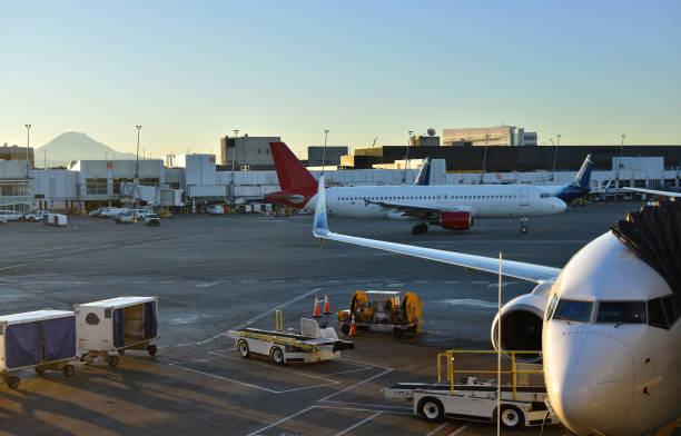 airplanes on tarmac at sea-tac with mount rainier in background - steven harrie stock photos and pictures
