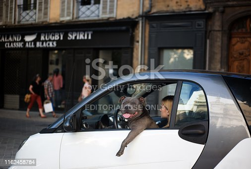 Aix-en-Provence, France: A pit bull looks at the camera with his tongue out and his leg out the window of a Smart Car; his owner, a young blond woman, looks in another direction in downtown Aix-en-Provence at dusk.