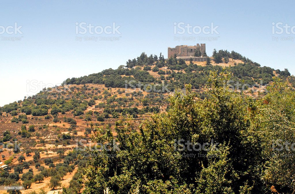 Ajlun castle and olive groves, Jordan stock photo