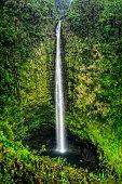 Akaka Falls State Park, located along the northeastern Hilo Coast,