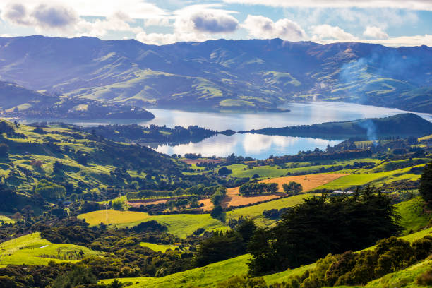 Akaroa stock photo