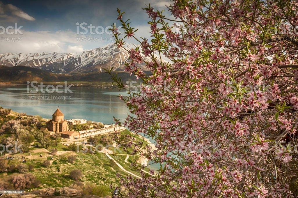 Akdamar Island stock photo