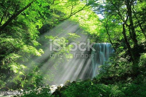 Akita Prefecture Summer Falls
