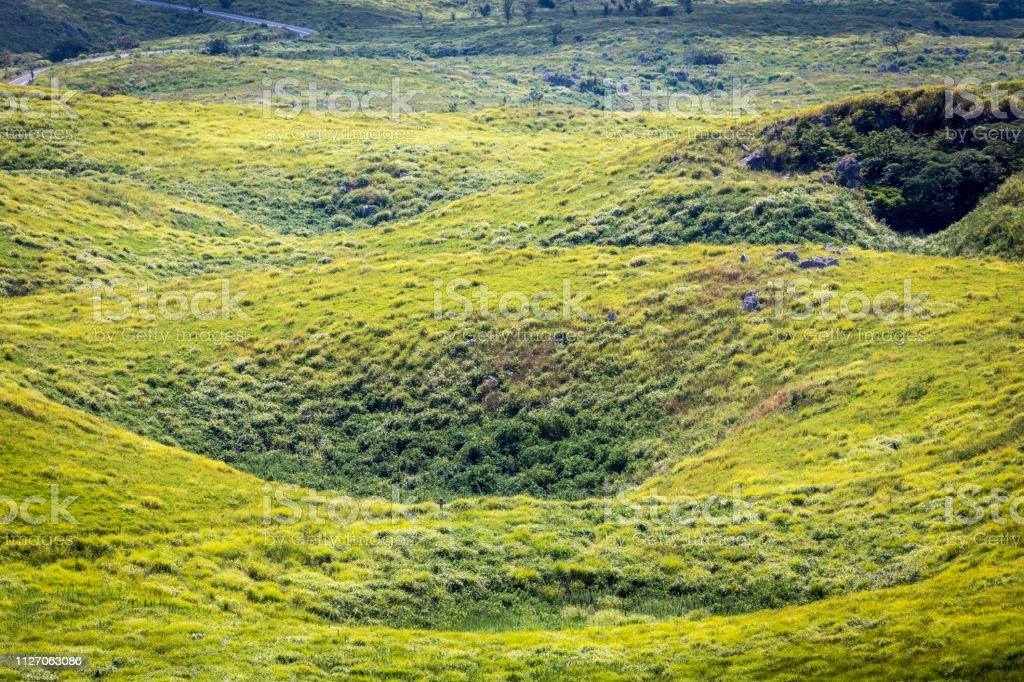 Akiyoshi Plateau Doline stock photo