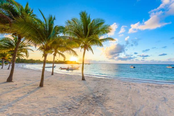 Akumal bay - Karibischer weißer Strand in Riviera Maya, Küste von Yucatan und Quintana Roo, Mexiko – Foto