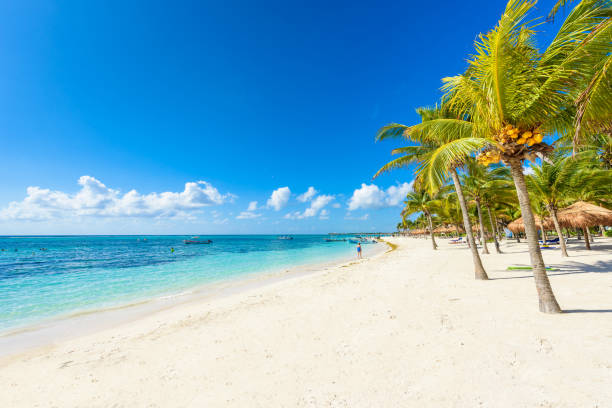 Akumal Beach - Paradise Bay Beach in Quintana Roo, Mexiko - Karibik-Küste – Foto