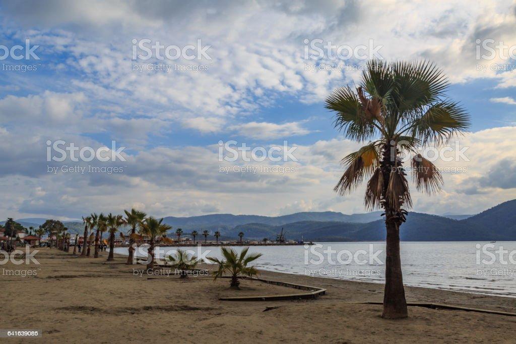 Palmiye ağaçları ve cennet, Muğla, Türkiye ile Akyaka plaj. stok fotoğrafı