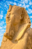 the Albaster sphinx can be admired in the ancient capital of Egypt south of Cairo