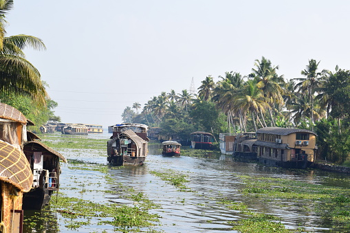 The most popular backwater destination in Kerala, this is fondly called the Venice of the East. Only here there are no tall buildings, but a variety of flora. A graceful place that is a rural wonderland, Alappuzha's charm is never-ending..