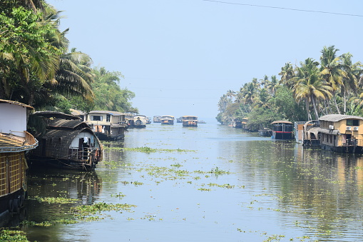 The most popular backwater destination in Kerala, this is fondly called the Venice of the East. Only here there are no tall buildings, but a variety of flora. A graceful place that is a rural wonderland, Alappuzha's charm is never-ending.