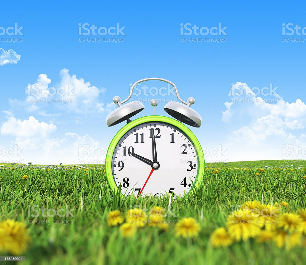 Alarm clock on the green grass field royalty-free stock photo