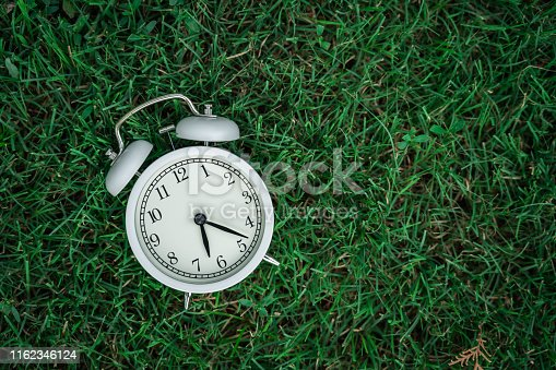 Alarm Clock On The Lawn