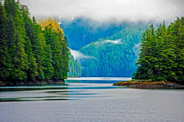 Alaska Cove Inland Passage stock photo