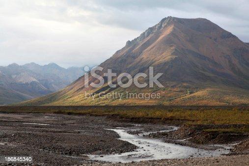 Alaska Denali WildernessAlaska Lightbox
