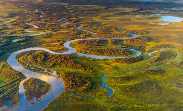 alaska landskap - denali national park bildbanksfoton och bilder
