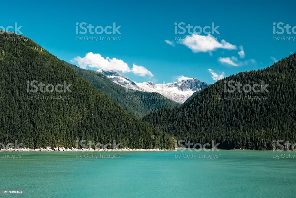 Alaska landscape with green forest, river moutains with the snow stock photo