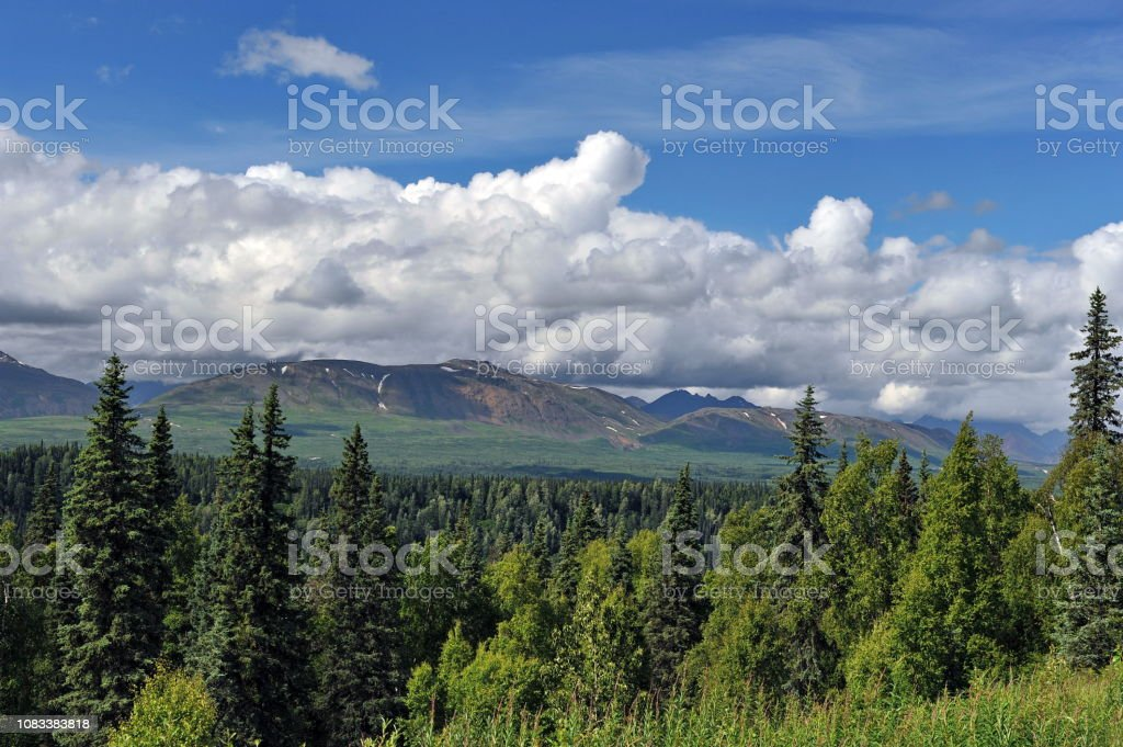 Alaska. Mountains and forests.