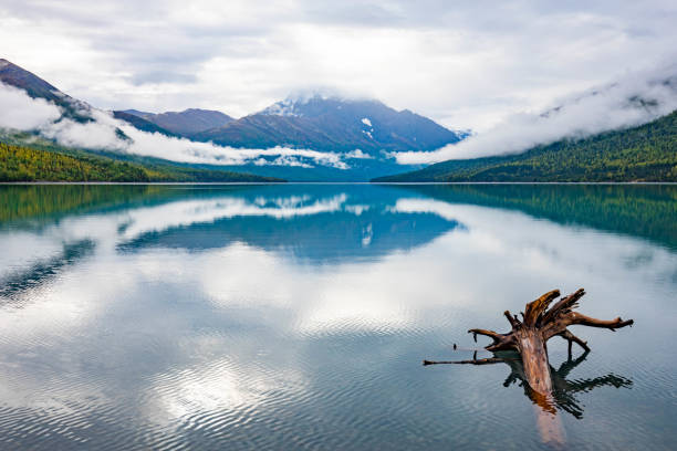 Alaska northern lake with snow mountains in the back stock photo