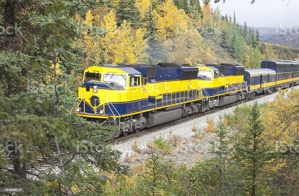 Alaska passenger train passing through Denali National Park stock photo