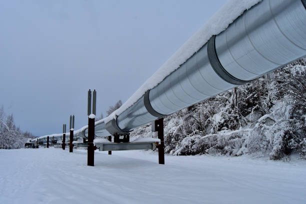 Alaska Pipeline in winter stock photo