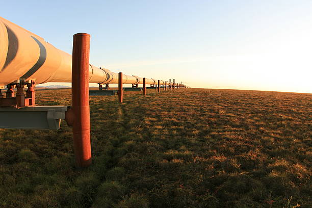 Alaska Pipeline stock photo