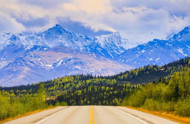 alaska vykort idyll - denali national park bildbanksfoton och bilder
