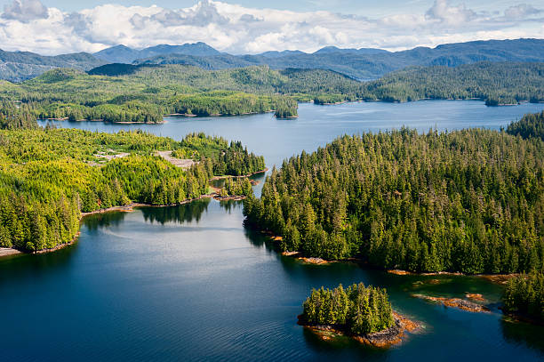 Alaska Prince of Wales island aerial view from floatplane Alaska Prince of Wales island aerial view from floatplane ketchikan stock pictures, royalty-free photos & images