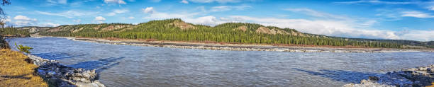 alaska -skyline - copper river - chinook salmon stock photos and pictures