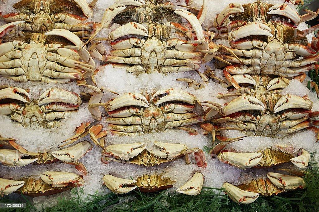 Alaskan King Crab In Market royalty-free stock photo