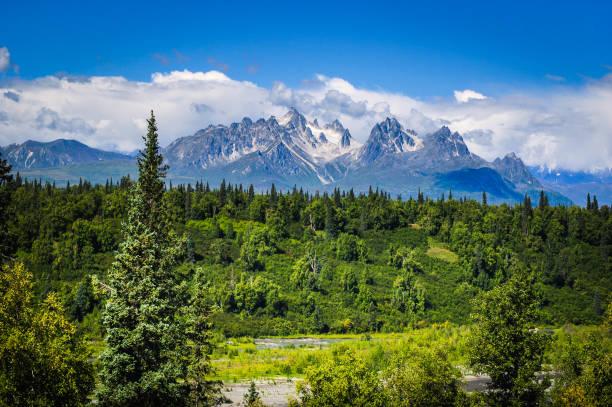 alaskan landskap - denali national park bildbanksfoton och bilder