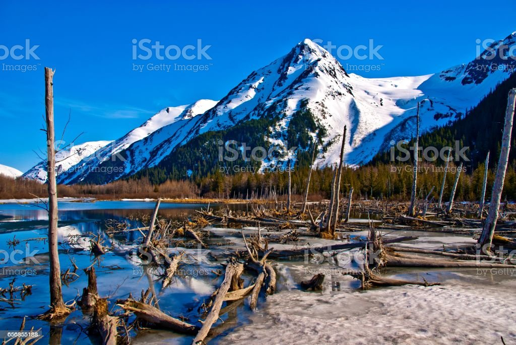 Alaskan Mounatin with Frozen Lake stock photo