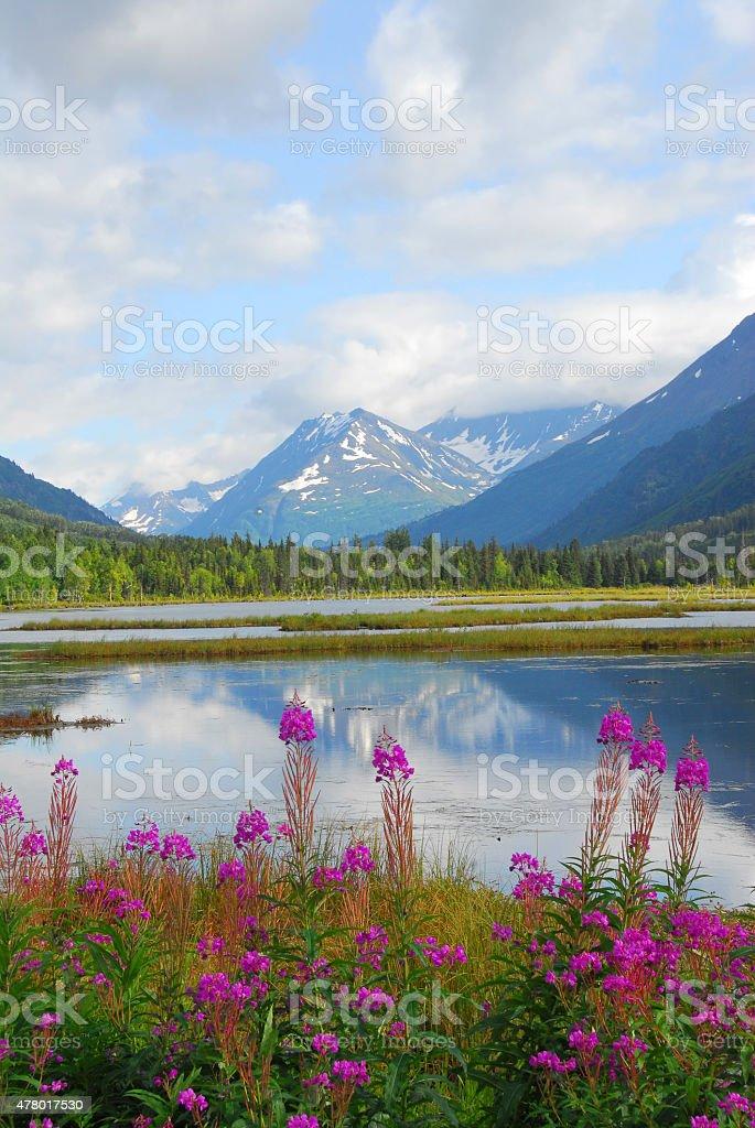 Alaskan Mountain & Lake Landscape stock photo
