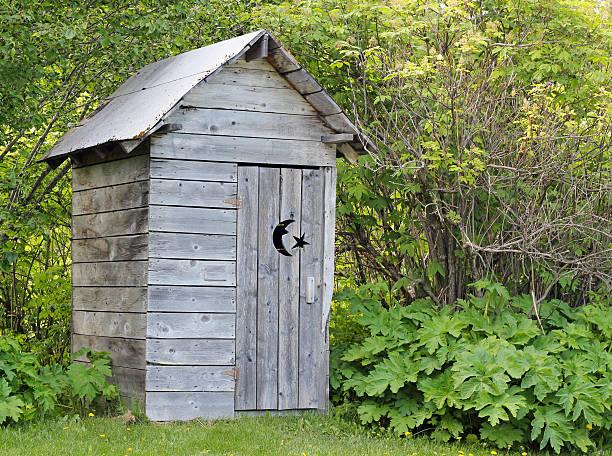 alaskan outhouse in summer - gemak stockfoto's en -beelden